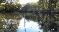 Táborsko –Od letošního roku už neplatí místní povolenky. Každý si tak musí koupit tu krajskou Rybáři byli postaveni před hotovou věc: pokud chtějí chytat, všichni členové svazu si musí koupit […]