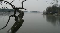 Výlov rybníka Bezdrev se uskuteční od 27.10. do 1.11.2013. Rybník se nachází v katastru obce Zliv. Výměra 425 ha. Návštěvníky upozorňujeme, že z technických důvodů může dojít ke změně plánovaného […]