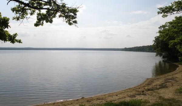 Dvořištěječtvrtý největšírybníknejen vJihočeském krajiale i v celéČeské republice. Je to druhý největší rybník vokrese České Budějovice. Nachází se přibližně 10kmseverozápadně odTřeboněa 4km jihozápadně odLomnice nad Lužnicíu silnice doČeských Budějovicna západní […]
