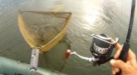 Peter Šimonič – Léto 2013 – Krásné záběry z lovu ze člunu na francouzských jezerech. Tester, zástupce značky JET FISH pro Slovensko od roku 2007. Profil