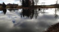 Zatím vládla poměrně teplá zima, během níž obklopují rybníky sportovní rybáři, kteří touží po úlovku. Ryby totiž berou. Profesní rybáři ale vysoké zimní teploty moc rádi nemají a současné ochlazení […]