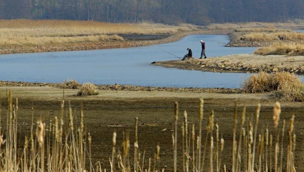 Vody v Lipenské přehradě je málo, ale není důvod k panice, zní z Povodí Vltavy. Vodní záchranář Milan Bukáček upozorňuje, že pokles hladiny může zhoršit kvalitu vody a přinést problémy […]