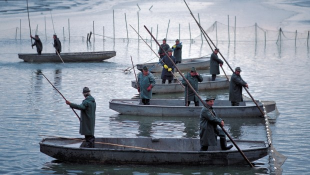 Podzim je pomalu za dveřmi a nám rybářům nastává doba výlovů. Portál Naše voda nabízí svým čtenářům přehled termínů a lokalit letošních výlovů rybníků, včetně odkazů na webové stránky konkrétních […]
